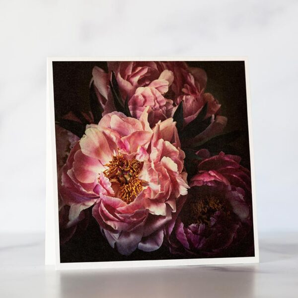 Photo of Dark Pink Peonies Fine Art Greeting Card