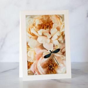 Photo of Dragonfly and Peonies Greeting Card by Melissa Bagley