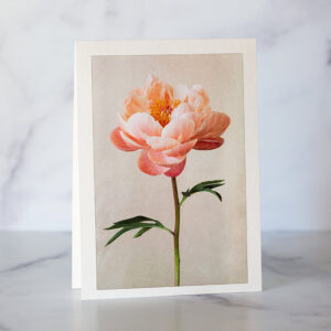 Photo of Peachy Pink Peony Greeting Card