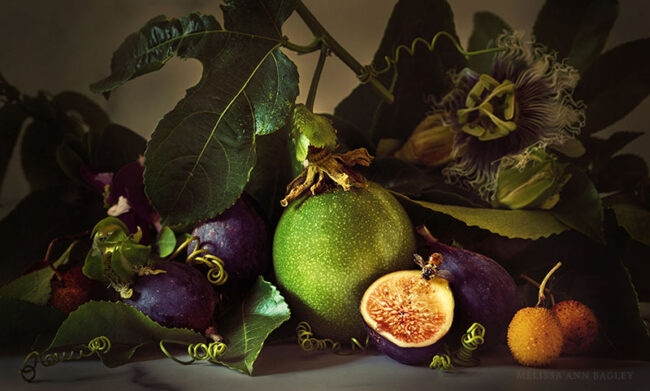 Photo of Figs and Passion Fruit by Melissa Bagley