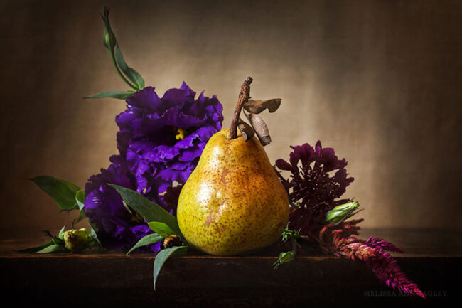 Photo of Pear and Flowers by Melissa Bagley