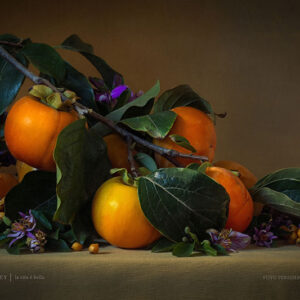 Fuyu Persimmons Poster