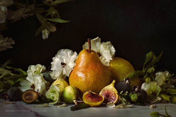 Pear and Figs Poster