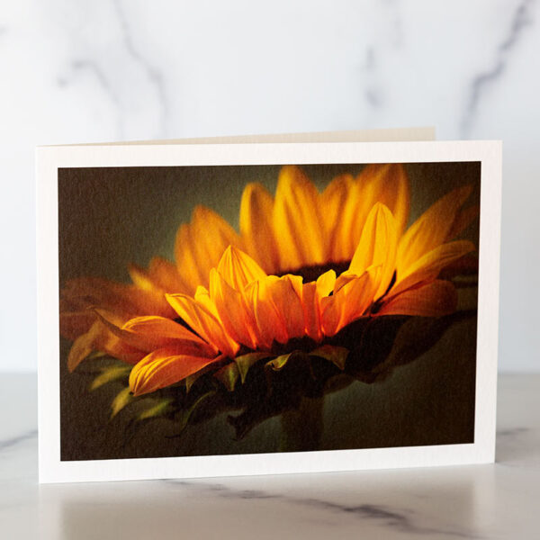 Photo of Yellow Sunflower Greeting Card by Melissa Ann Bagley