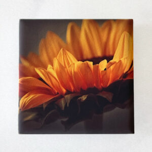 Yellow Sunflower Magnet by Melissa Ann Bagley