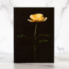 Photo of Golden Rose Mini Card by Melissa Ann Bagley