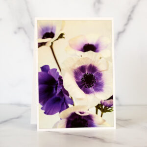 Photo of Purple Anemones Greeting Card by Melissa Ann Bagley