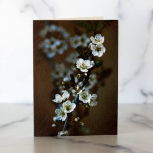 Photo of Spring Blossoms Mini Card by Melissa Ann Bagley