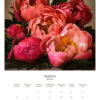 March 2022 wall calendar page with rich pink peonies on it