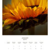 August 2022 wall calendar page with a yellow sunflower on it
